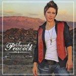 Sarah Peacock - Albuquerque Sky