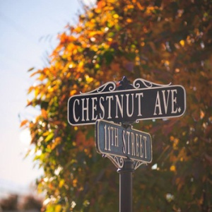 Chestnut Avenue