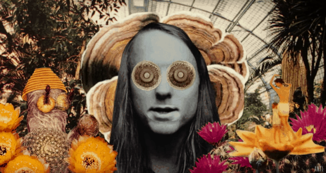 Andy Shauf The Magician vid cap